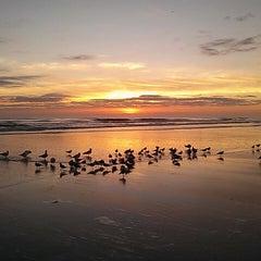 Photo taken at City of Daytona Beach by Martelli M. on 3/14/2013