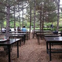 Photo taken at Çatı Cafe by Bülent Y. on 7/27/2013