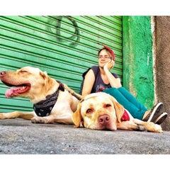 Photo taken at Vaz Lobo by Edge S. on 6/21/2014