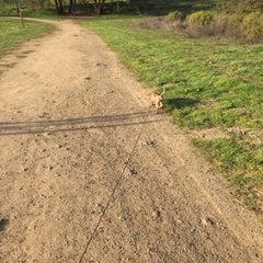 Photo taken at Alston Dog Park by Tristan F. on 1/10/2015
