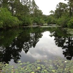 Photo taken at Spring Lake Park by kataZyna m. on 5/21/2013