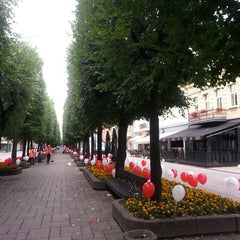 Photo taken at Laisvės alėja | Liberty Avenue | Аллея Свободы by Laimutė V. on 7/12/2013