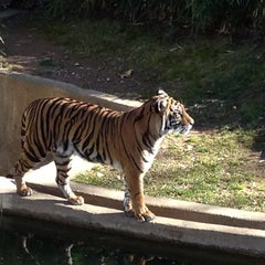 Photo taken at Smithsonian National Zoological Park by Jenny R. on 1/19/2013