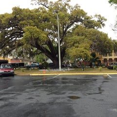Photo taken at The Old Senator Tree by F_ I. on 3/12/2013