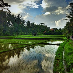 Photo taken at Ubud by Another T. on 7/9/2013