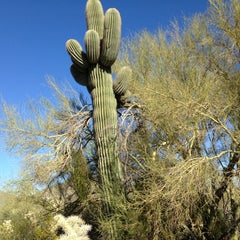 Photo taken at Usery Mountain Regional Park by Holly F. on 11/12/2012