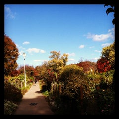 Photo taken at Fenway Victory Gardens by Caroline H. on 11/3/2012