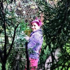 Photo taken at Jardins de la Cartoixa by AJRA on 12/23/2012