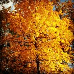 Photo taken at The Morton Arboretum by Rafael F. on 10/8/2012