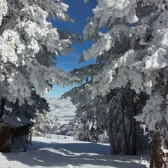 Photo taken at Snowbasin Resort by Noah F. on 2/2/2013
