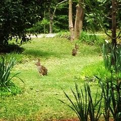 Photo taken at Mobile Botanical Gardens by Burgundy H. on 4/4/2013