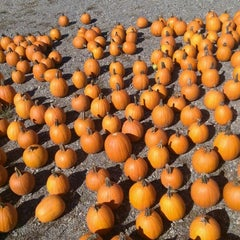 Photo taken at Connors Farm by Will A. on 10/5/2014