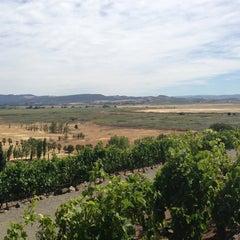 Photo taken at Viansa Winery by Steven H. on 6/18/2013