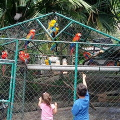 Photo taken at Expanzoo by Heymar D. on 6/30/2013