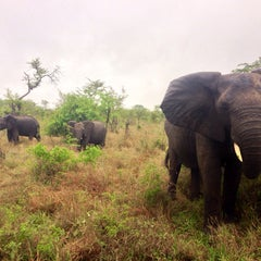Photo taken at Tintswalo Safari Lodge by Kenny on 11/10/2013