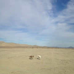 Photo taken at El Mirage Dry Lake by jefree p. on 2/23/2014