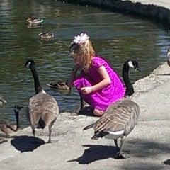 Photo taken at Eisenhower Park by Heather Annette C. on 8/17/2014