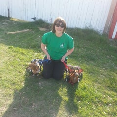 Photo taken at Texas Humane Heroes by Cyndi S. on 3/22/2013