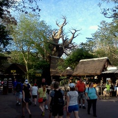Photo taken at Harambe Village by Harry W. on 1/30/2013