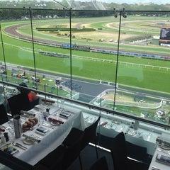 Photo taken at Royal Randwick Racecourse by Aldo on 12/14/2013