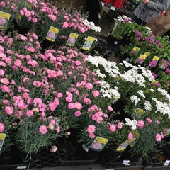 Photo taken at Lowe's Home Improvement by Silvia R. on 4/28/2013