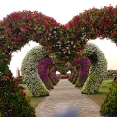Photo taken at Dubai Miracle Garden by Mikai M. on 4/24/2013