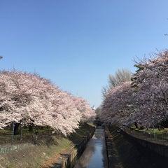 Photo taken at 尾崎橋 by Yuki Y. on 3/31/2015