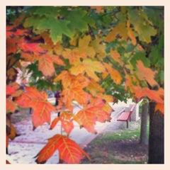 Photo taken at Webb Hall by Tony O. on 10/4/2012