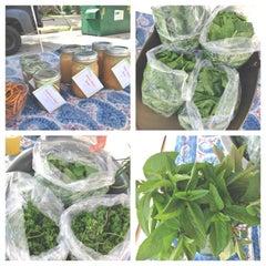 Photo taken at Drake Farmers Market by Sara B. on 6/19/2013