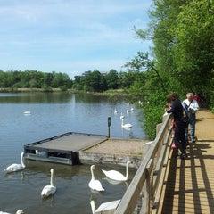 Photo taken at Fleet Pond by Richard M. on 5/26/2013
