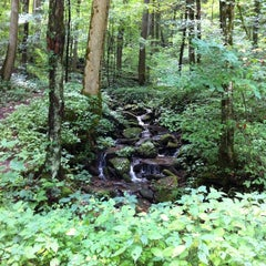Photo taken at Chatahooche National Forest by Bryant F. on 8/10/2014