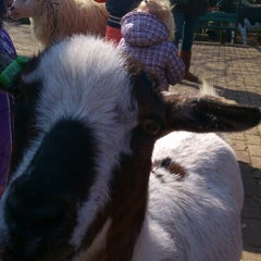 Photo taken at Kinderboerderij Otterspoor by Roy S. on 4/1/2013