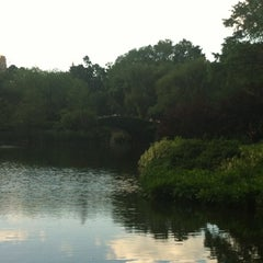 Photo taken at Central Park Duck Pond by John C. on 5/31/2012