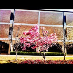 Photo taken at Dallas Theological Seminary by Keeyon U. on 2/24/2012