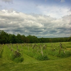 Photo taken at Americana Vineyards & Winery by Rachel B. on 5/25/2013