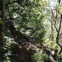 Photo taken at ʻĪao Valley State Park by Julie'Keoki A. on 7/7/2013