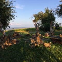 Photo taken at Indian Creek Farm by Chris P. on 8/19/2015