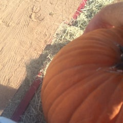 Photo taken at MacDonald's Ranch by Nick R. on 10/19/2014
