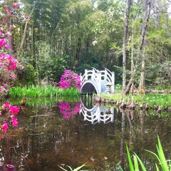 Photo taken at Magnolia Plantation & Gardens by Elizabeth F. on 4/4/2013