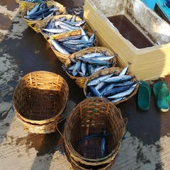 Photo taken at Tempat Pelelangan Ikan by CicojeRiko S. on 6/21/2014
