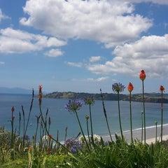 Photo taken at Waiheke Island by Niina E. on 1/6/2015