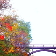 Photo taken at 旭山記念公園 by TKSS on 11/3/2012