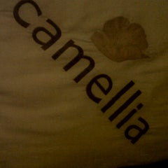 Photo taken at Camellia Hotel by ร. รักเพียงแค่เธอ i. on 10/19/2012