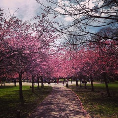 Photo taken at Ravenscourt Park by Ludovic D. on 4/14/2013