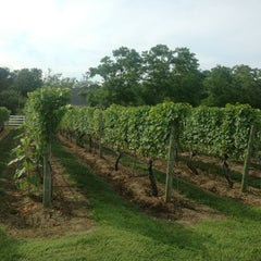 Photo taken at Truro Vineyards of Cape Cod by Susan H. on 7/29/2013