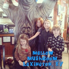 Photo taken at Mellow Mushroom Pizza Bakers by Kerry D. on 3/31/2013