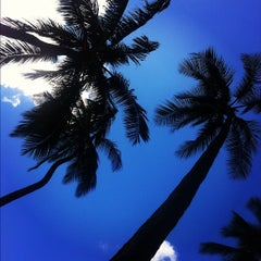 Photo taken at Super Pool and Keiki Pool (Children's Pool) by Christian on 11/13/2012