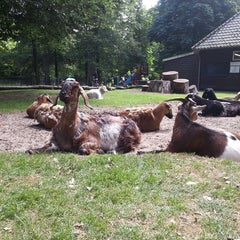Photo taken at Kinderboerderij De Houthoeve by jAnina m. on 8/8/2013