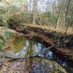 Photo taken at North Carolina Botanical Gardens by Manasi K. on 11/16/2013