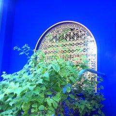 Photo taken at Jardin de Majorelle   حديقة ماجوريل by Silvia Z. on 10/24/2012